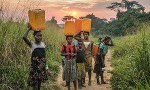 刚果民主共和国扬甘比附近的女童正在汲水。