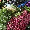 Près de 14% de la nourriture mondiale est perdue après la récolte et avant d'avoir atteint le stade de la vente.