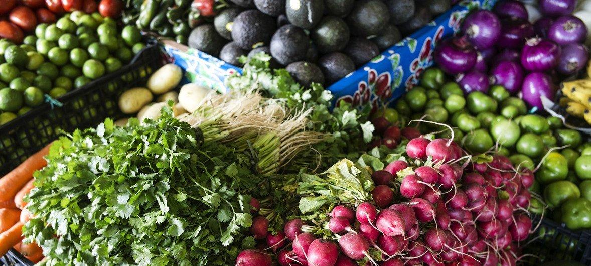Средиземноморская диета - это большое количество овощей, фруктов и бобовых, а также зелень и оливковое масло.