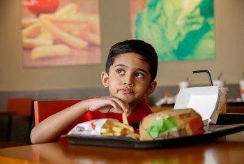 A FAO afirma que nas últimas décadas, as dietas e hábitos alimentares mudaram drasticamente como resultado da globalização, urbanização e crescimento da renda.