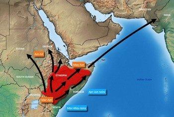 Utabiri wa FAO kuhusu mwelekeo wa nzige wa jangwani kwenye eneo la pembe ya Afrika kwa mwezi Machi hadi Juni 2020