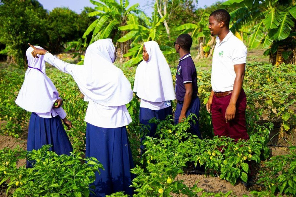 Wanafunzi nchini Tanzania wanaohudhuria darasa la kilimo