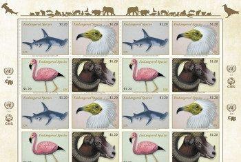 联合国发行濒危迁徙物种邮票