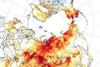 Las temperaturas de Siberia en junio de 2020 fueron las más cálidas en casi 20 años.
