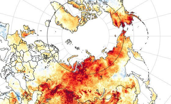 Land surface temperatures in Siberia in June 2020 were hotter than average for the same period from 2003-2018.