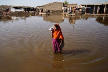 联合国人权专家今天呼吁巴基斯坦停止卡拉奇市内两条河道沿岸的强制拆迁。