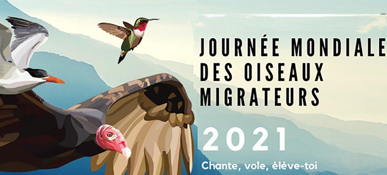 Journée mondiale des oiseaux migrateurs - 2021