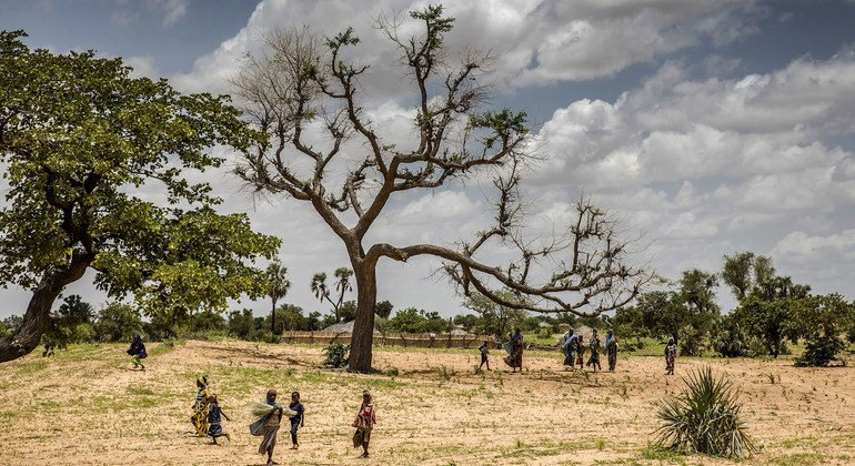 New FAO report highlights urgent need to restore Africa's degraded landscape