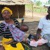 Agências humanitárias atuam em áreas como Mueda, Montepuez, Negomano e Quitunda e Mocímboa da Praia