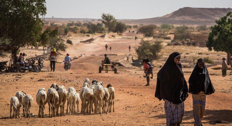 联合国谴责对尼日尔西部村庄的袭击