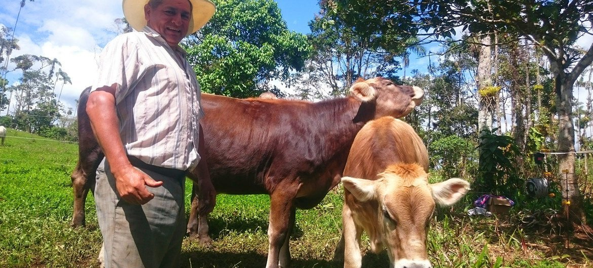 An Ecuadorian cattle farmer gives away free milk to families, helping those in need and avoiding food waste during the coronavirus pandemic.