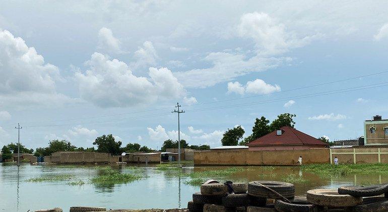 Inondazioni in Ciad: l'OIM aiuta 11.500 sfollati e chiede maggiore sostegno