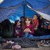 Una familia siria de Idlib que llegó recientemente a la isla griega de Lesbos se alberga en un huerto de olivos adyacente al centro de recepción de Moria.