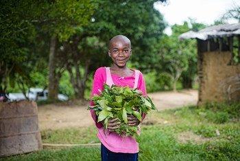 在喀麦隆的一个村庄里,一个孩子拿着她花园里种植的蔬菜。