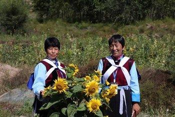向日葵田里的农村妇女