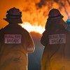 Пожарные в Австралии, где уже несколько месяцев бушуют опустошительные пожары лесов и кустарника.