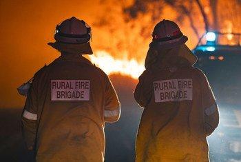 В Австралии уже несколько месяцев бушуют опустошительные пожары, каких страна не видела на протяжении десятилетий.