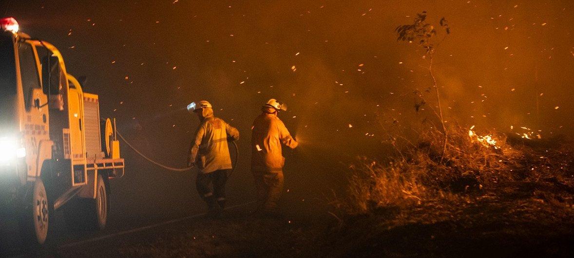 澳大利亚林火:儿基会协助救灾行动 强调决策者应倾听受灾儿童心声