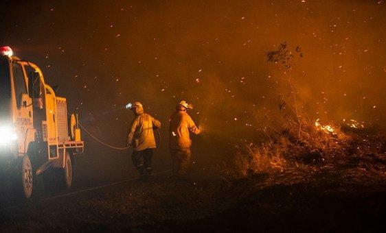 Pelo menos 24 pessoas morreram desde o início dos incêndios, milhares ficaram desabrigadas com o espalhar do fogo que devastou uma área equivalente a mais que todo o território da Bélgica.