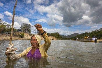 Une femme utilise un filet pour pêcher dans les eaux peu profondes de la rivière Rupununi en Guyane.