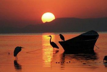 मैक्सिको की चपाला झील में सूर्योदय का नज़ारा