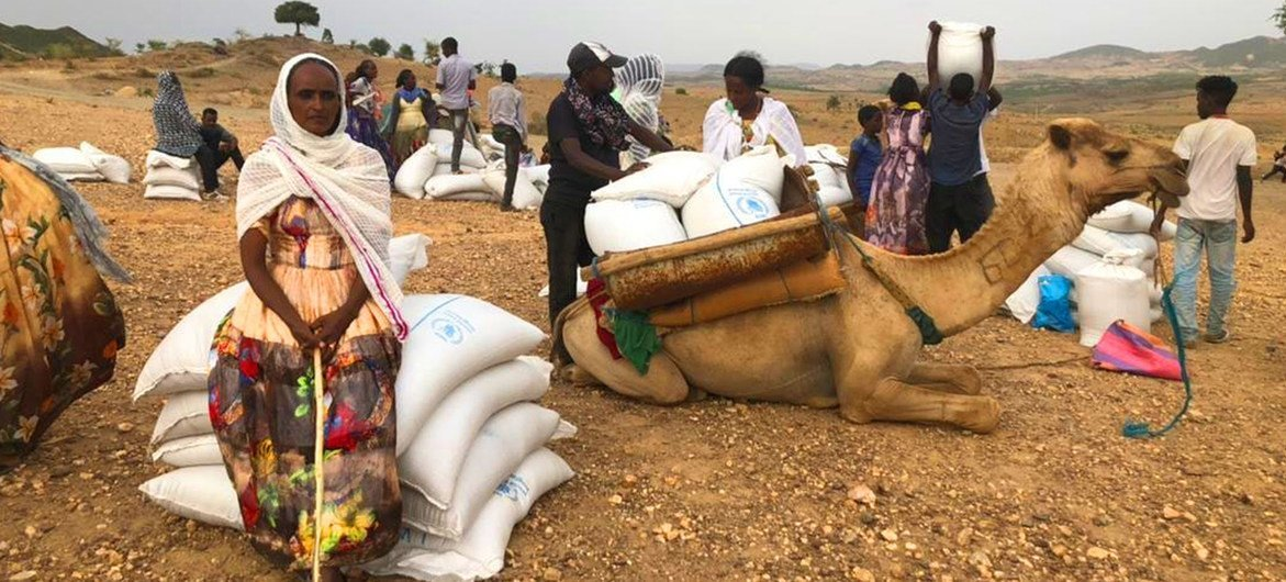 استأنف برنامج الأغذية العالمي عملياته في إقليم تيغراي بعد أن أوقف القتال الاستجابة الطارئة.