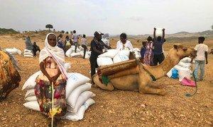 联合国粮食计划署在今年七月初重新启动了在提格雷地区的援助行动。