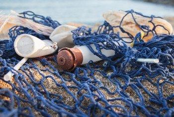 Вот такой улов. От пластиковых отходов страдают более 600 видов морских обитателей.