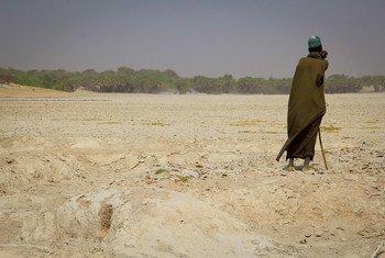 El Lago Chad ha perdido el 90% de su superficie en los últimos 50 años.