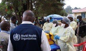 L'OMS intensifie ses efforts pour endiguer les épidémies d'Ebola en Guinée et en République Démocratique du Congo