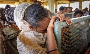 14000名来自厄立特里亚的难民居住在提格雷的迈艾尼(Mai Aini )难民营。