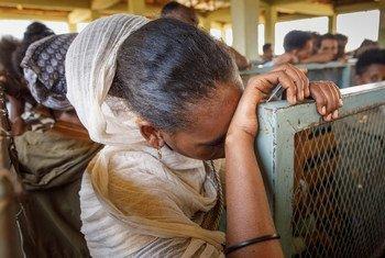Des milliers de réfugiés d'Erythrée vivent dans le camp de Mai-Aini dans la région du Tigré, en Ethiopie.