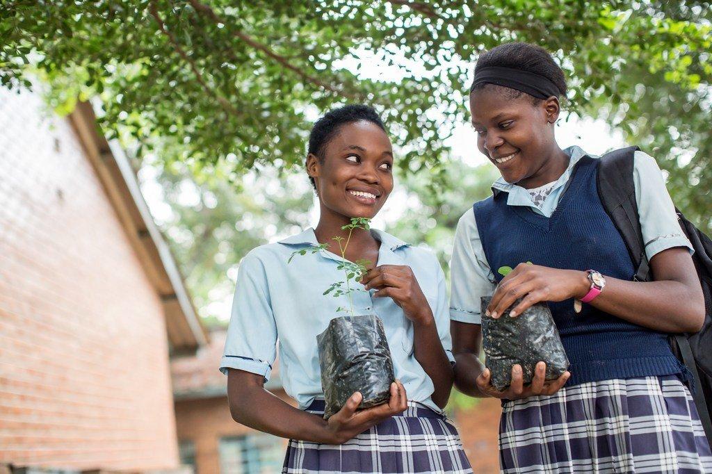 Des adolescentes tiennent des pousses de plantes, à l'école secondaire de filles Matero à Lusaka, en Zambie.