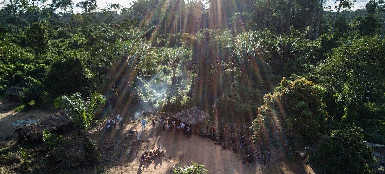 Aldea indígena en un área remota de bosques en la República Democrática del Congo