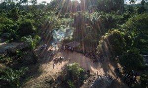 刚果共和国偏远地区森林深处的一个土著人村落。