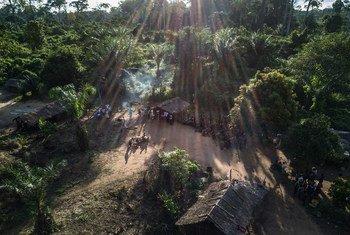 Un petit village autochtone, situé au plus profond de la forêt dans une région éloignée de la République du Congo.