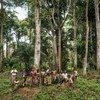काँगो लोकतान्त्रिक गणराज्य में आदिवासी समुदाय के सदस्य एक दूरदराज़ के इलाक़े में वनों में रह रहे हैं.