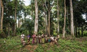 أفراد من أحد المجتمعات الأصلية التي تعيش في إحدى الغابات النائية في جمهورية الكونغو الديمقراطية.