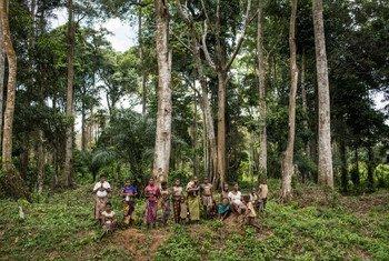 Comunidad indígena de los bosques en la República Democrática del Congo