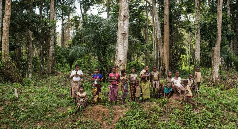 Protect forests, support forest communities, Guterres urges, marking World Wildlife Day
