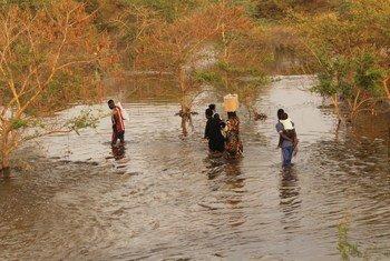 Mvua kubwa zilizosababisha mafuriko zimeharibu barabara na sasa wakazi wanatembea ndani ya maji ili kufikia maeneo yao huko Khor Adar.