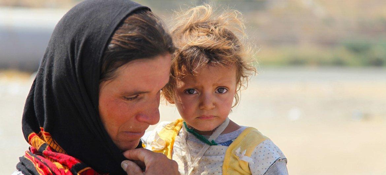 Тысячи езидов вынуждены были покинуть свои дома, спасаясь от зверств боевиков ИГИЛ.