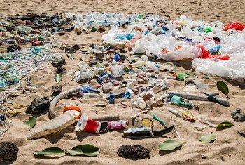 इंडोनेशिया के बाली में समुद्र किनारे पड़ा कचरा. संयुक्त राष्ट्र पर्यावरण कार्यक्रम ने वहाँ समुद्र को साफ़ करने का अभियान चलाया था.