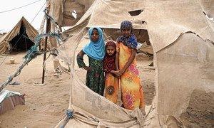 Niños desplazados en el asentamiento de Abs, en Yemen, a apenas 40 kilómetros de la zona de enfrentamientos. Sus tiendas de campaña son afectadas a menudo por las tormentas de arena.