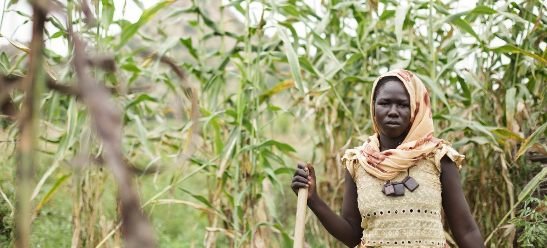 La dépendance excessive à l'égard des activités traditionnelles telles que l'agriculture a laissé tous les pays les moins avancés (PMA) extrêmement vulnérables au choc économique causé par la Covid-19.