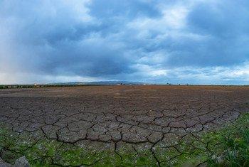 दुनिया के अनेक इलाक़ों में इस तरह का सूखा पड़ने से खाद्य सुरक्षा पर भी भारी असर होता है. ये स्पेन के कैटोलोनिया क्षेत्र में एब्रो डेल्टा का एक दृश्य है.
