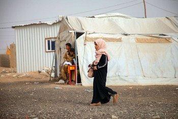 也门的冲突迫使数百万人逃离家园前往临时营地。