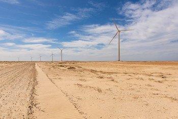 Un parc d'éoliennes à la périphérie de la capitale mauritanienne, Nouakchott. (11 janvier 2019)