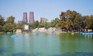 墨西哥城的著名景点,查普尔特佩克的马焦雷湖(Lago Mayor de Chapultepec,)。
