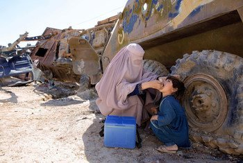 A UN-supported polio worker in Afghanistan administers a polio vaccine to a young child (file).